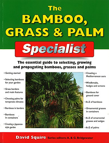 Tree Bamboo Blue (The Bamboo, Grass & Palm Specialist: The Essential Guide to Selecting, Growing and Propagating Bamboos, Grasses and Palms (Specialist Series))
