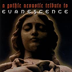 A Gothic Acoustic Tribute To Evanescence