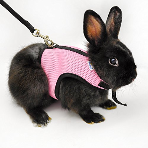 niteangel-soft-harness-with-lead-for-rabbits-pink