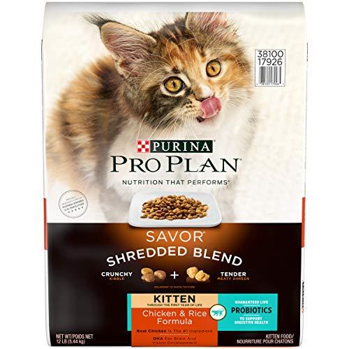 Purina Pro Plan Probiotics Dry Kitten Food, SAVOR Shredded Blend Kitten Chicken & Rice Formula - 12...