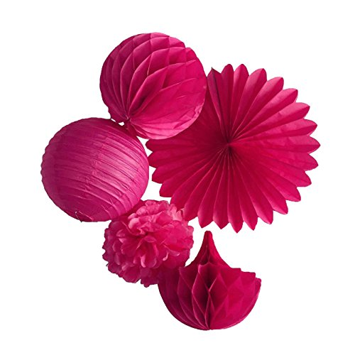 SUNBEAUTY Pack of 5 Fuchsia Series Tissue Paper Pom Poms Paper Fan Paper Honeycomb Ball and Paper Lanterns Home Decor (Paper Honeycomb Ball)