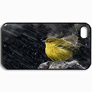 Fashion Unique Design Protective Cellphone Back Cover Case For iPhone 4 4S Case Bird In Rain Design Black