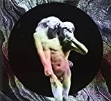 The Arcade Fire: Reflektor (Audio CD)