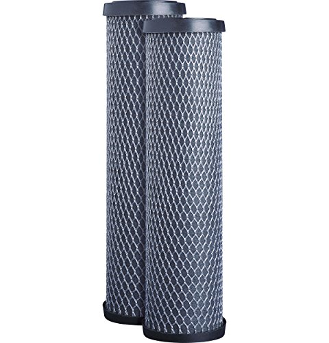 GE FXWTC Whole Home System Replacement Filter Set, Pack of 2 ()