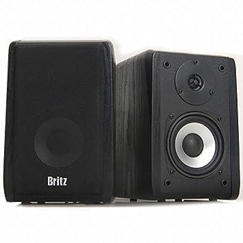 Amazon.com: Britz International Br-1000a Plus 2 Ch Wooden ...