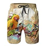 Watercolor Africa Parrot Pet Birds Men's swim Trunks Quick Dry Board Shorts With Pockets And Drawstring