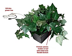 All-in-One SD Card Self Recording Covert Spy Camera (Camera Hidden in Fake Plant) from SCS Enterprises