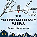 The Mathematician's Shiva Audiobook by Stuart Rojstaczer Narrated by Angela Brazil, Stephen R. Thorne
