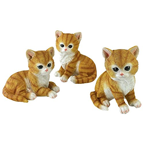 Design Toscano Tabby Kitten Triplets, Baby Cat Statues for sale  Delivered anywhere in USA