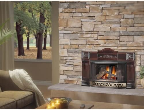 Amazon Com Gdi 30n Napoleon Direct Vent Gas Fireplace Insert
