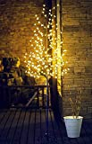 Fashionlite 6.5-Feet 240 LED Cherry Blossom Flower Tree Light Decoration(Warm White)