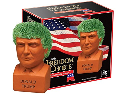 Chia Pet Donald Trump, Decorative Pottery Planter, Freedom of Choice, Easy to Do and Fun to Grow, Novelty Gift, Perfect for Any Occasion