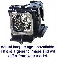 Diamond Lamp for EIKI LC-SD10 Projector with a Matsushita bulb inside housing