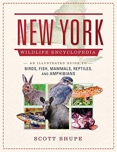 New York State Bird - New York Wildlife Encyclopedia: An Illustrated Guide to Birds, Fish, Mammals, Reptiles, and Amphibians