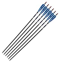 "6Pcs Carbon Arrows 31"" Turkey Feather Archery Arrows for Target Practice Bow Hunting Season Compound & Recurve Bow Game, Blue"
