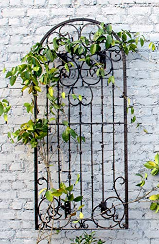 Scroll Garden Metal - H Potter Large Wall Trellis Indoor Outdoor Wrought Iron Heavy Scroll Metal Decoration (Large W/Wall Brackets)
