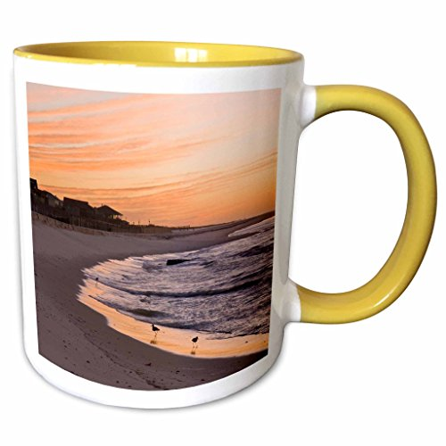 3dRose Danita Delimont - Beaches - Alabama, Gulf Shores, Beach, shore birds - US01 TDR0000 - Trish Drury - 11oz Two-Tone Yellow Mug - Gulf Outlets Shores