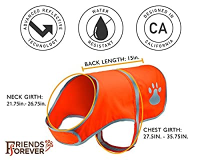 Friends Forever Reflective Safety Vest for Dogs