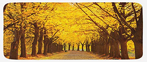 Lunarable Landscape Kitchen Mat, Botanical Garden Autumn Leaves in The Fall Linden Alley in Kiev Ukraine Image, Plush Decorative Kitchen Mat with Non Slip Backing, 47 W X 19 L Inches, Yellow Brown ()