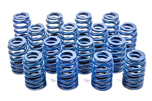Ls1 Valve Springs (GM Parts 12499224 Valve Spring for LS1 Engine)