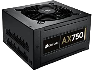 Corsair Professional Series  AX 750 Watt ATX/EPS Modular 80 PLUS Gold (AX750)