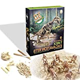 Johouse Dinosaur Excavation Toy, Dinosaur Archaeological Toy Dinosaur Fossil Dinosaur Fossil Skeleton Kids, 13PCS