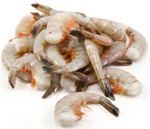 wild shrimp fisheries Free essay: shrimp fisheries lena buchanan mol 504a systems thinking and the learning organization professor toni pauls warner pacific college november 12th.