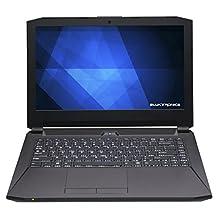 Eluktronics P640RE 14.0-Inch Premium Gaming Laptop (Intel Core i7-6700HQ Quad Core, Full HD IPS Display, Windows 10 Home, NVIDIA GeForce GTX 970M, 1TB Eluktro Pro Performance Flash SSD + 16GB RAM)