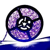 [Upgrade]Water-resistance IP65, 12V UV/Ultraviolet Blacklight Waterproof LED Black Strip Lights, 16.4ft/5m Cuttable LED Light Strips, 300 Units 3528 LEDs Lighting String, LED Tape
