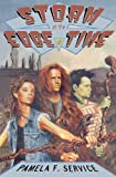 Storm at the Edge of Time by Pamela F. Service front cover
