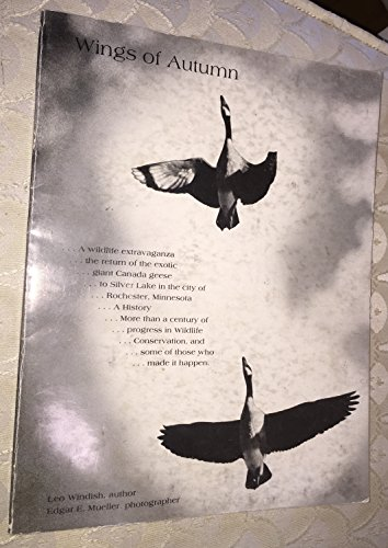 Canada Goose Wing (Wings of Autumn (Canada Geese/Silver Lake Book))