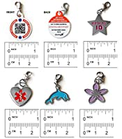 Dynotag® Web/GPS Enabled QR Code Smart Medical and Emergency Contact Information Charm Bracelet Kit with 5 Movable Charms & Loop Chain by Dynotag