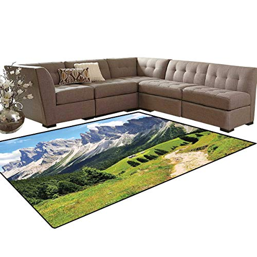 - Mountain Door Mats Area Rug Winding Path into The Pine Tree Forest Meadows and Mountain Scenery Print Anti-Skid Area Rugs 6'x9' Green White Blue