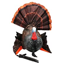 MOJO Outdoors Scoot and Shoot Turkey Hunting Decoy, Multicolor