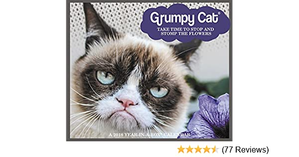 2018 Grumpy Cat Calendar Year In A Box Year In A Box