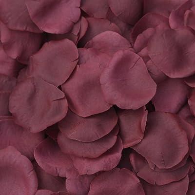 Amazon.com: Borgoña seda pétalos de rosa – 250 – Pétalos ...