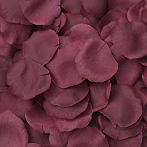 TheBridesBouquet.com Burgundy Silk Rose Petals - 250 Petals - Wedding Centerpiece 12