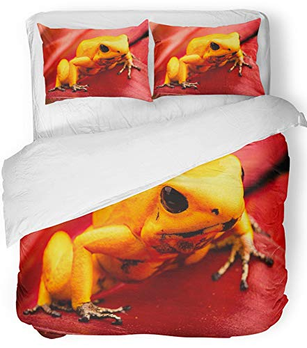 Emvency 3 Piece Duvet Cover Set Breathable Brushed Microfiber Fabric Poison Dart Frog Phyllobates Terribilis Deadly Animal from The Tropical Amazon Bedding Set with 2 Pillow Covers King Size