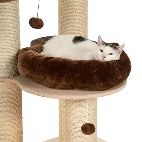Natural estable - Árbol de Gato Chocolate Colored - cojines de extraíble y lavable - Mediano - Apta para gatos grande raza y pesada - Chocolate: Amazon.es: ...