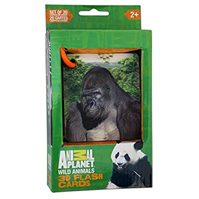 Smart Play Animal Planet 3D Flash Cards - Wild Animals: Toys & Games