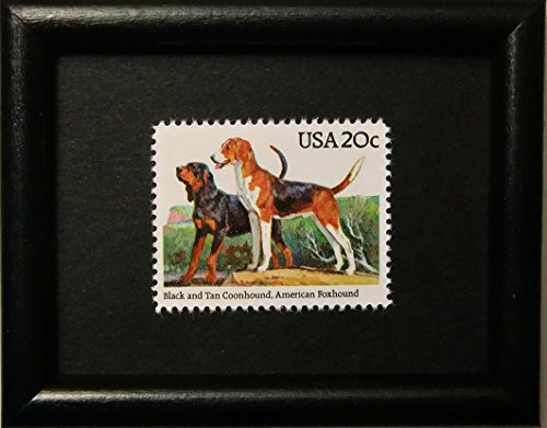 Hound Postage (Black and Tan Coonhound -American Foxhound Dog -USA -Framed Postage Stamp Art)