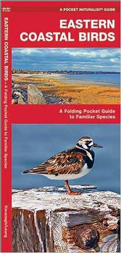 Téléchargements de livres électroniques gratuits sur téléphones mobilesEastern Coastal Birds: A Folding Pocket Guide to Familiar Species (Pocket Naturalist Guide Series) (Littérature Française) PDF ePub MOBI