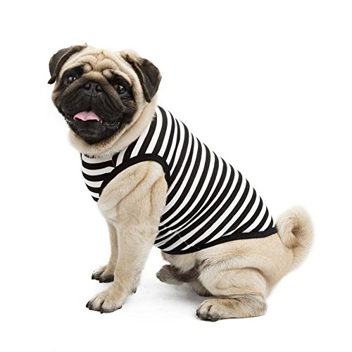 [Kuoser Fashion Small Pet Dog Cotton T- shirt Vest Spring Summer striped Dog tank Comfy Vest Pajamas Pet Costumes XS -L,black] (Spider Costume Pattern Free)