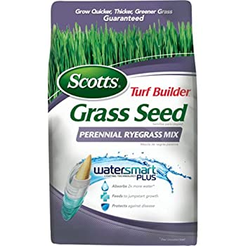 Scotts Turf Builder Grass Seed - Perennial Ryegrass Mix, 3-pound (Not Sold In Louisiana) 0