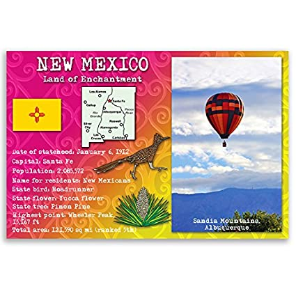 Amazon New Mexico State Facts Postcard Set Of 20 Identical
