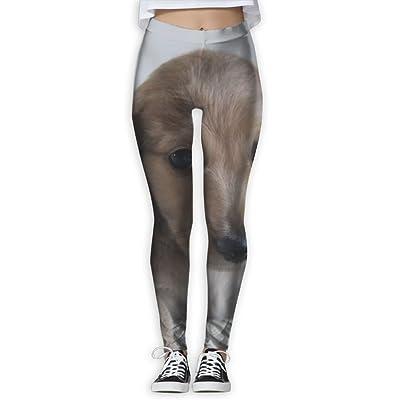 NSYGCK Dachshund Dog Yoga Pants for Women Colorful Slim-Fit Yoga Leggings