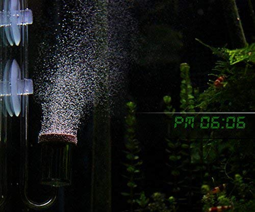 Pm0606 Micro co2 Bubble Diffuser air Stone Built in Bubble Counter, Smallest Smooth co2 Bubbles, Very Good for Aqua Plants, Shrimps (co2 Diffuser for  Large Size Tank) 1' inch
