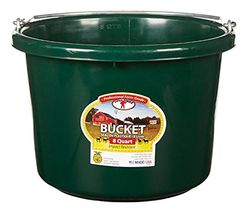 Miller Manufacturing P8GREEN Plastic Round Back Bucket for Horses, 8-Quart, Green