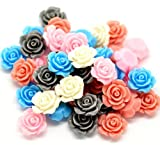 Housweety 100 Mixed Resin Flower Embellishments