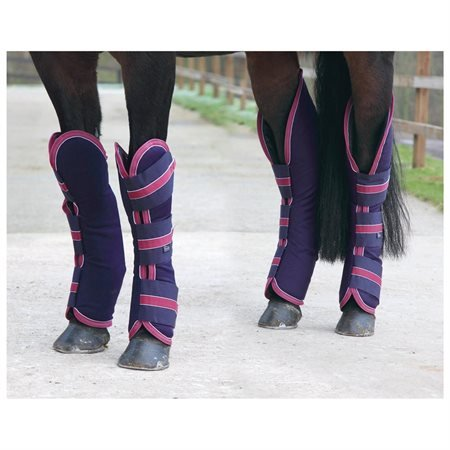 Travelmates Shipping Boots, Black/Tan - Cob by Shires